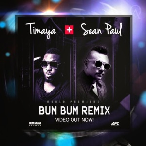Bum-Bum-Timaya-Sean-Paul-ART